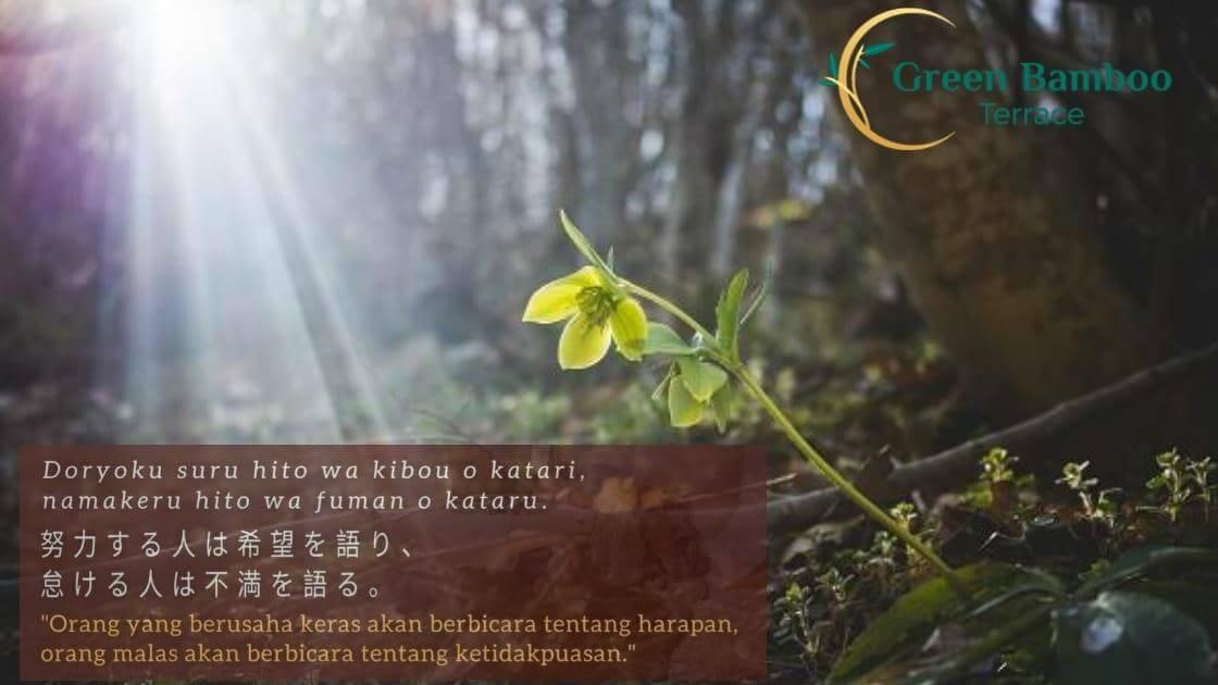 Tahun Baru Quote